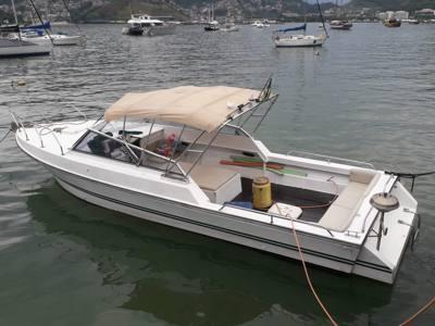 402/alugar charter lancha 3 pes angra dos reis rj costa verde 398 935