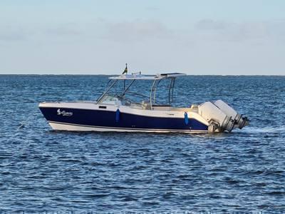 21/alugar charter 27 lancha praia dos carneiros pe nordeste 604 7950