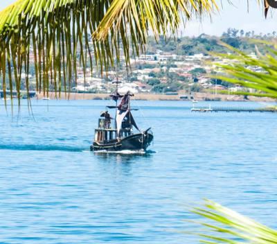 52alugar charter  outros brasilia df none 659 648