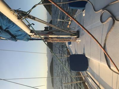 269/alugar charter 30 veleiro  sp none 672 697