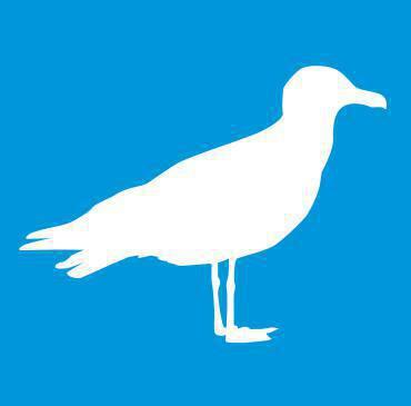 Foto de perfil do usuário